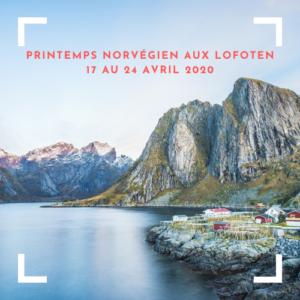 printemps en Norvège Lofoten